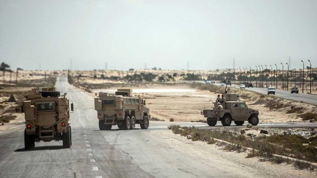 Egypt: 89 Daesh TerroristsKilled in Restive Sinai