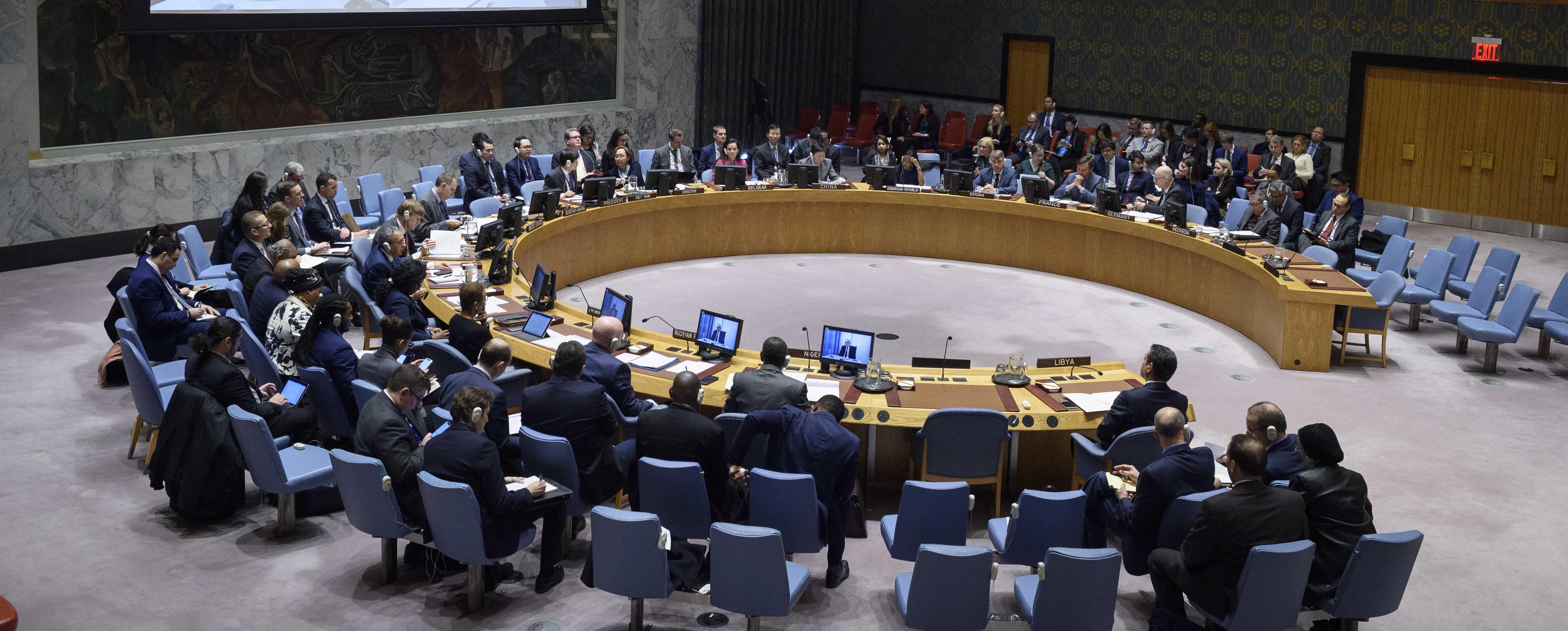 UN Security Council Calls for Exit of Mercenaries from Libya