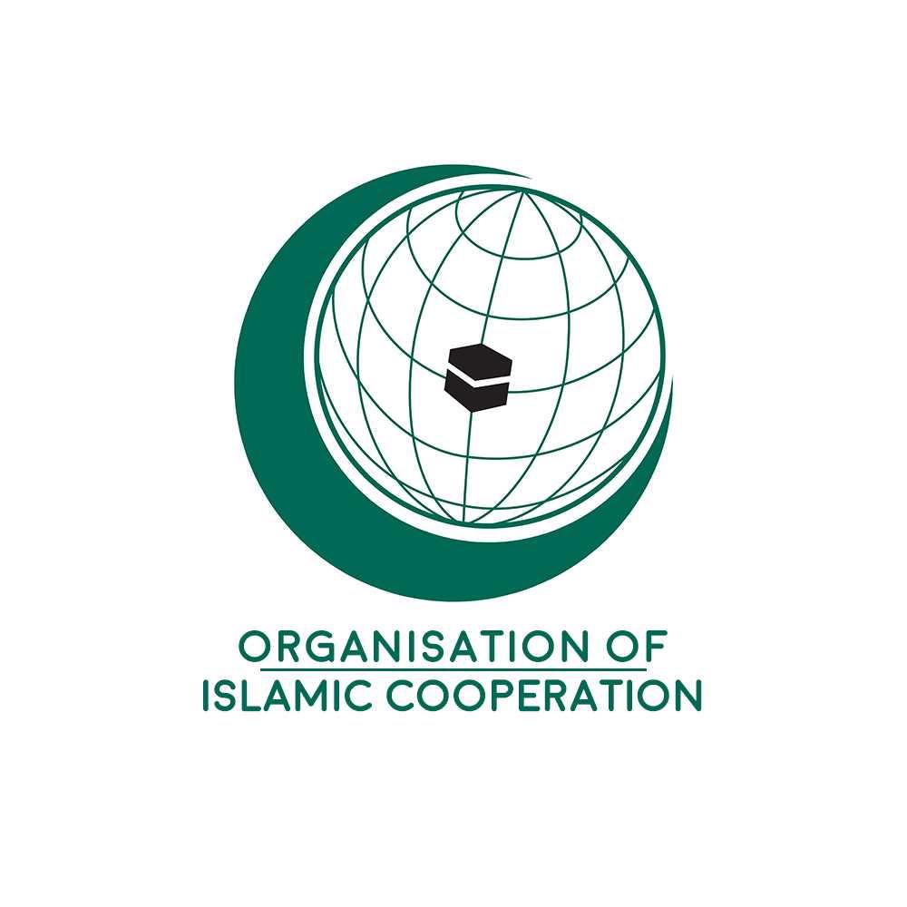 OIC Asks UN to Form Unprecedented Panel to Look into Israeli Violations in Palestine