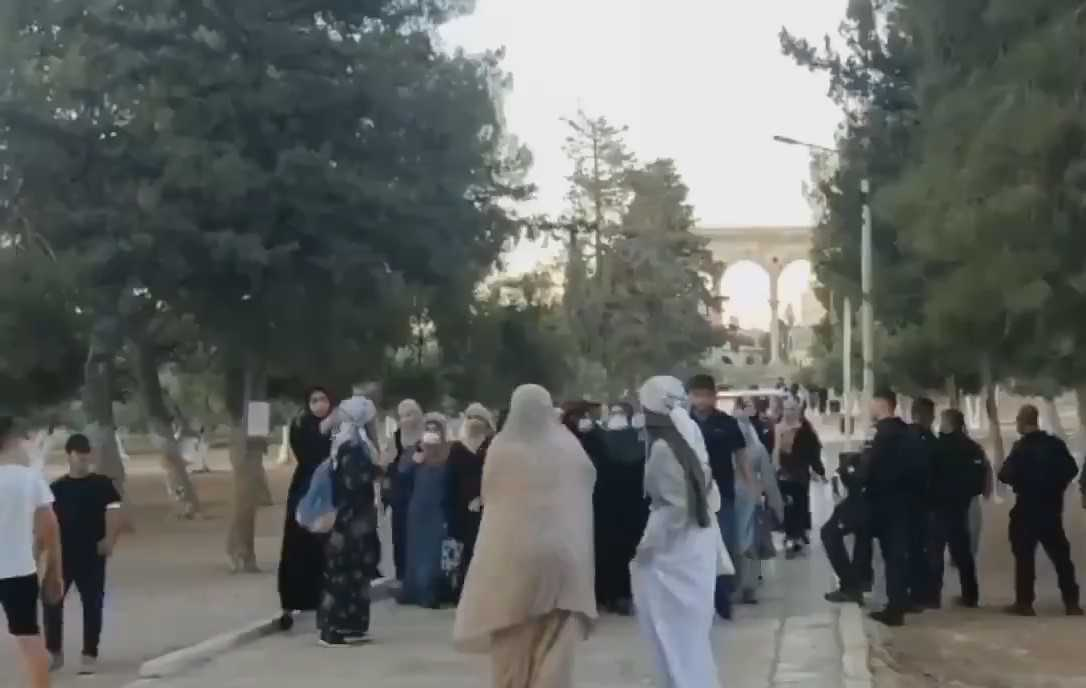 Video Shows Zionist Occupation Soldier Brutally Assaulting Palestinian Woman at Al-Aqsa Mosque