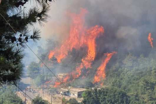 Video Shows Massive Fire Devouring Forests and Besieging Residents in Northern Lebanon