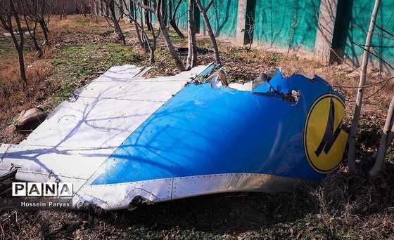 US Electronic Jamming Caused Ukrainian Plane Crash: Former CIA Officer