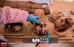 VIDEO: 54 coffins unearthed in Egypt in major finding