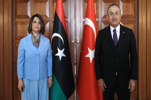 'Turkey respects Libya's sovereignty & political unity'