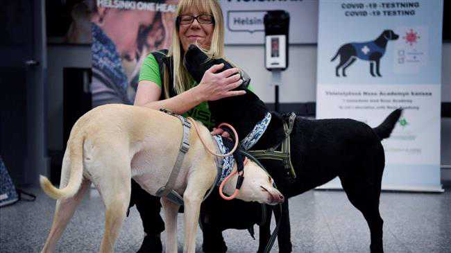 Finland deploys coronavirus-sniffing dogs at main airport